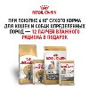 6+12 на корма от Royal Canin в Динозаврик